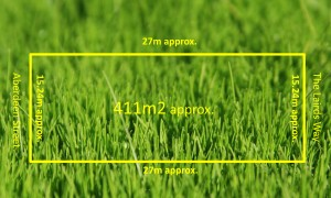 grass-with-land-size